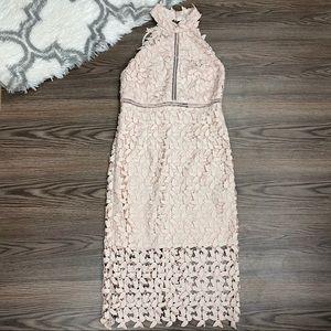 NWT Bardot Prosecco Lace Dress Size 8
